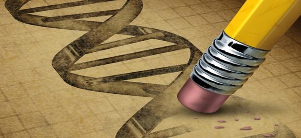 Seeds of Destruction The Hidden Agenda of Genetic Manipulation