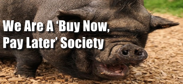 America-The-Pig-Public-Domain-460x306